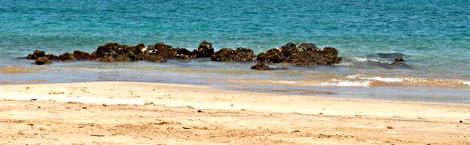 sea-feature-serifandspice.com